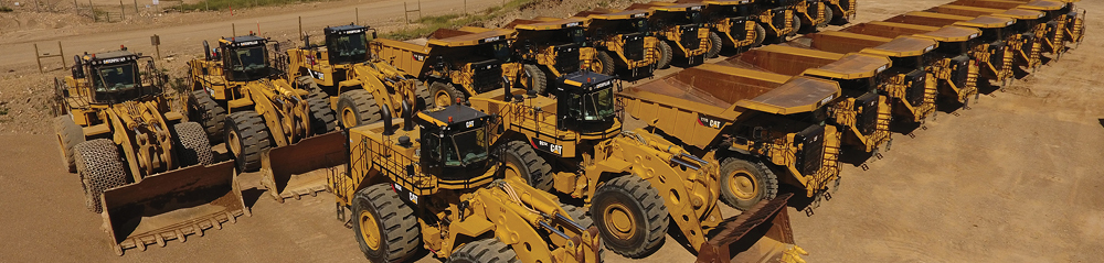 Mining Deals Large Cat